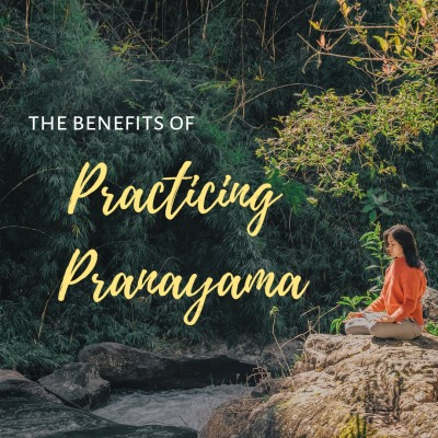 Practicing Pranayama: 4 Controlled Breathing Techniques for Your Yoga & Meditation Practice